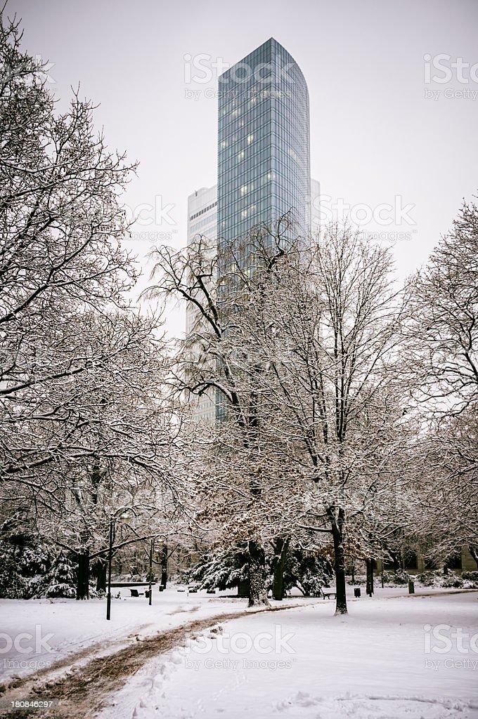 Winter in the park – Frankfurt am Main royalty-free stock photo