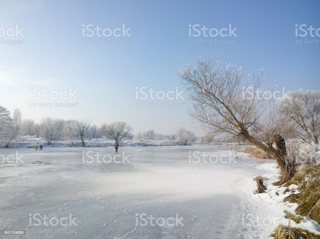 Winter in the park. stock photo
