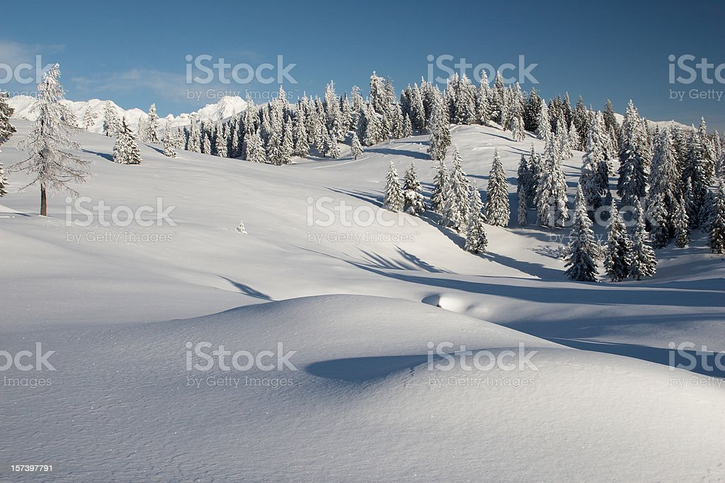 Winter in wilderness royalty-free stock photo