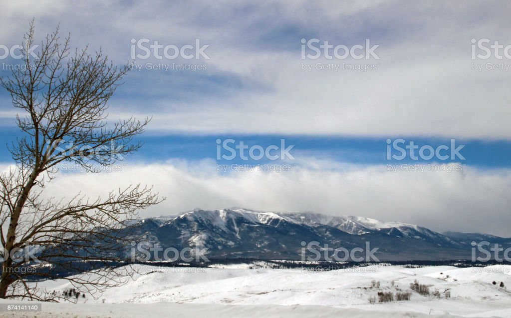 Winter in Yellowstone stock photo