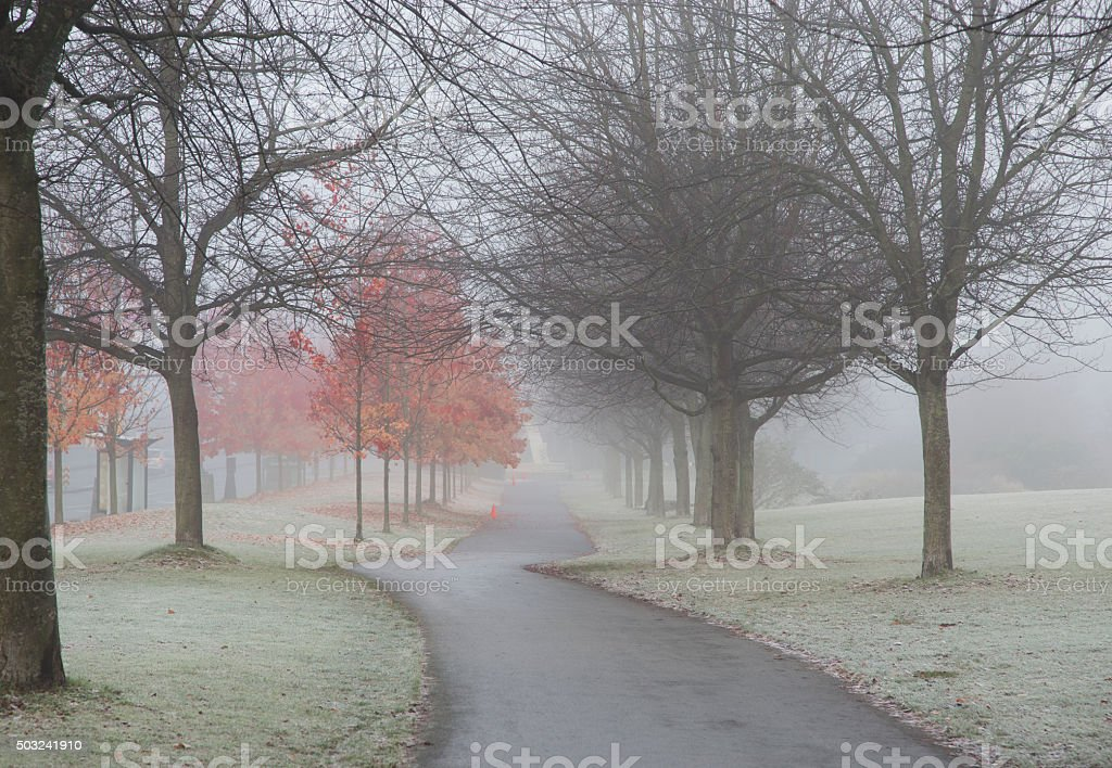 Winter is coming stock photo