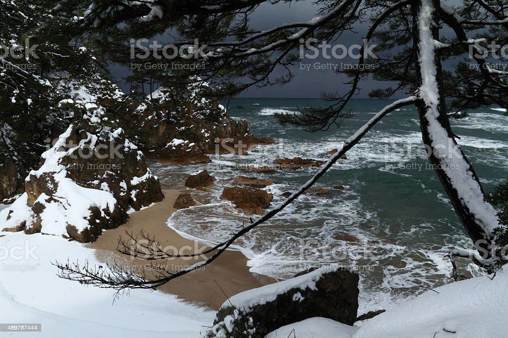 冬の日本の海岸 ストックフォト