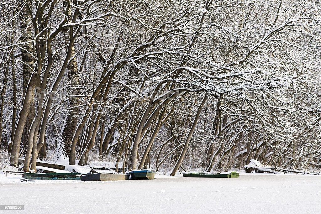 Winter lake, landscape royalty free stockfoto