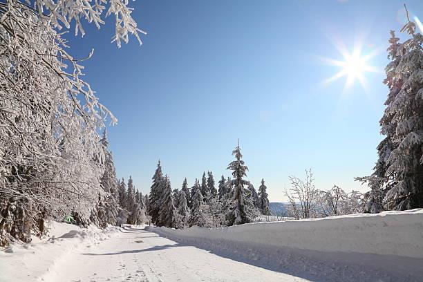 landcape winter mit Schnee in Black Forest – Foto