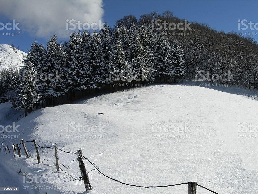 Winter Landscape 01 royalty-free stock photo
