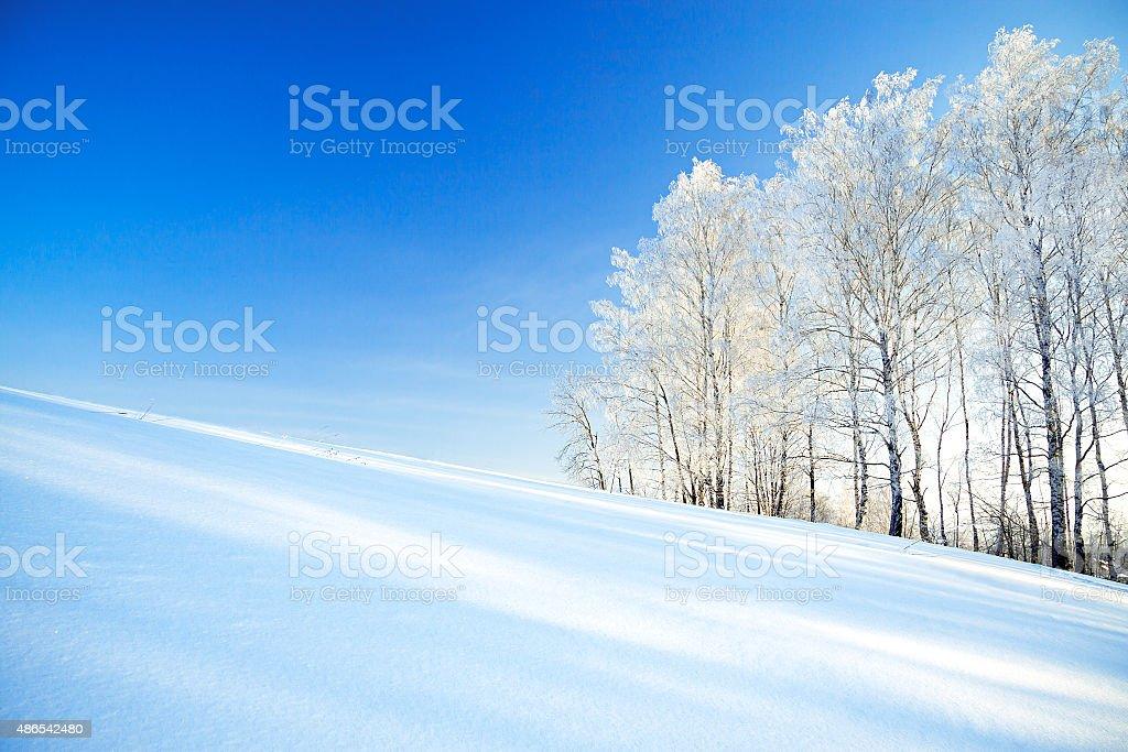 Paisaje de invierno en el campo y el bosque - foto de stock