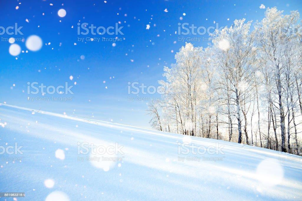 paisaje de invierno una con el cielo azul, un campo y el bosque - foto de stock