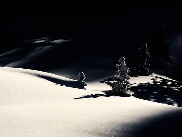 Winter-Landschaft als Weihnachtskarte – Foto