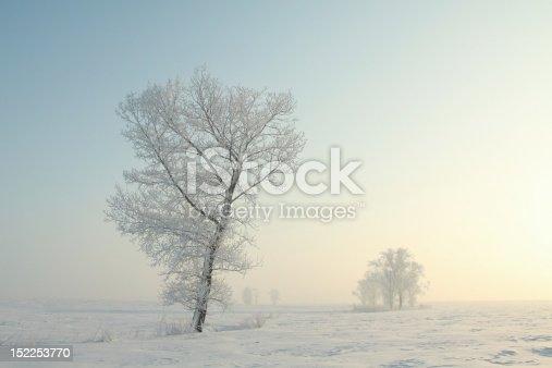 1034754000 istock photo Winter landscape at dawn 152253770