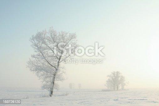 1034754000 istock photo Winter landscape at dawn 153726120