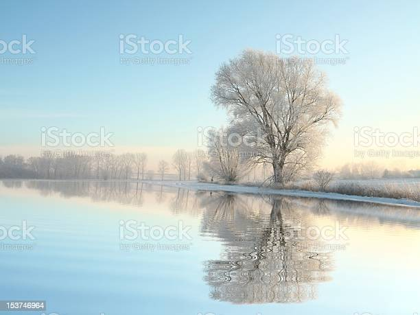 Photo of Winter landscape at dawn