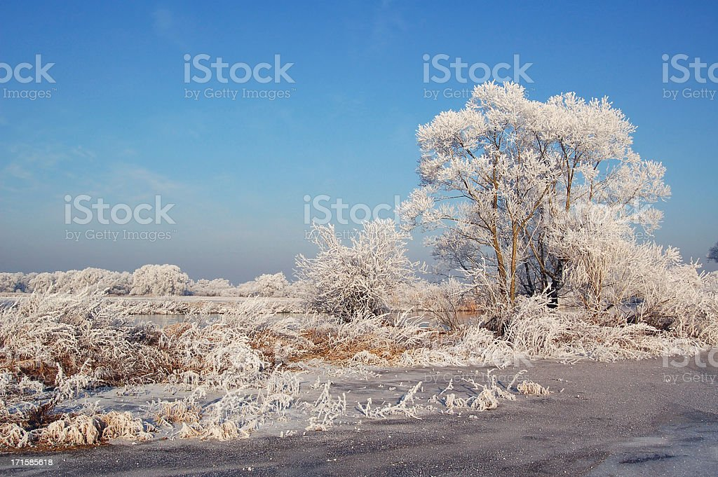 winter landscape at Havel River (Germany) royalty-free stock photo