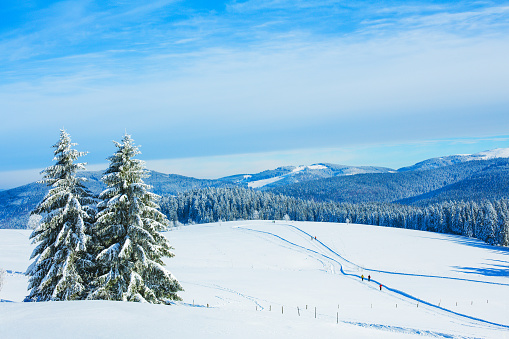Winter landscape at Schauinsland in Black Forest, near Feldberg, Germany