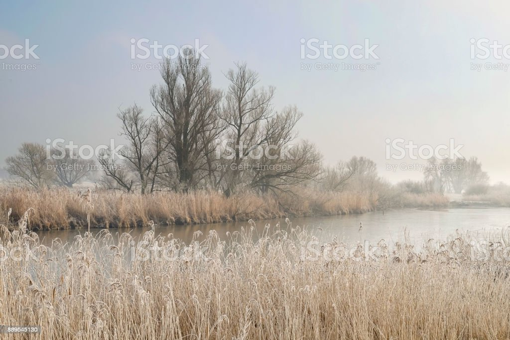 Winter landscape at the river IJssel near Zwolle in The Netherlands stock photo