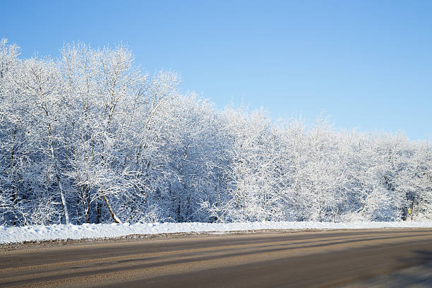Winter landscape at the roadside stock photo
