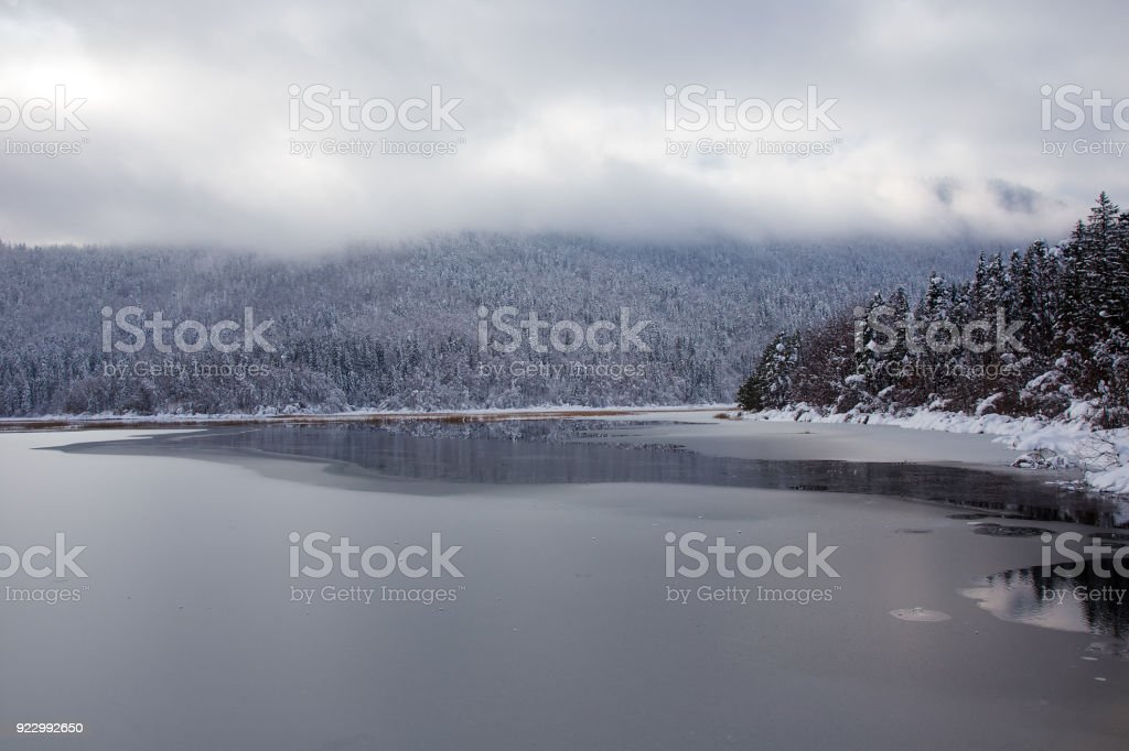 Winter landscape background with beautiful reflection in the water, Cerknica lake, Slovenia stock photo