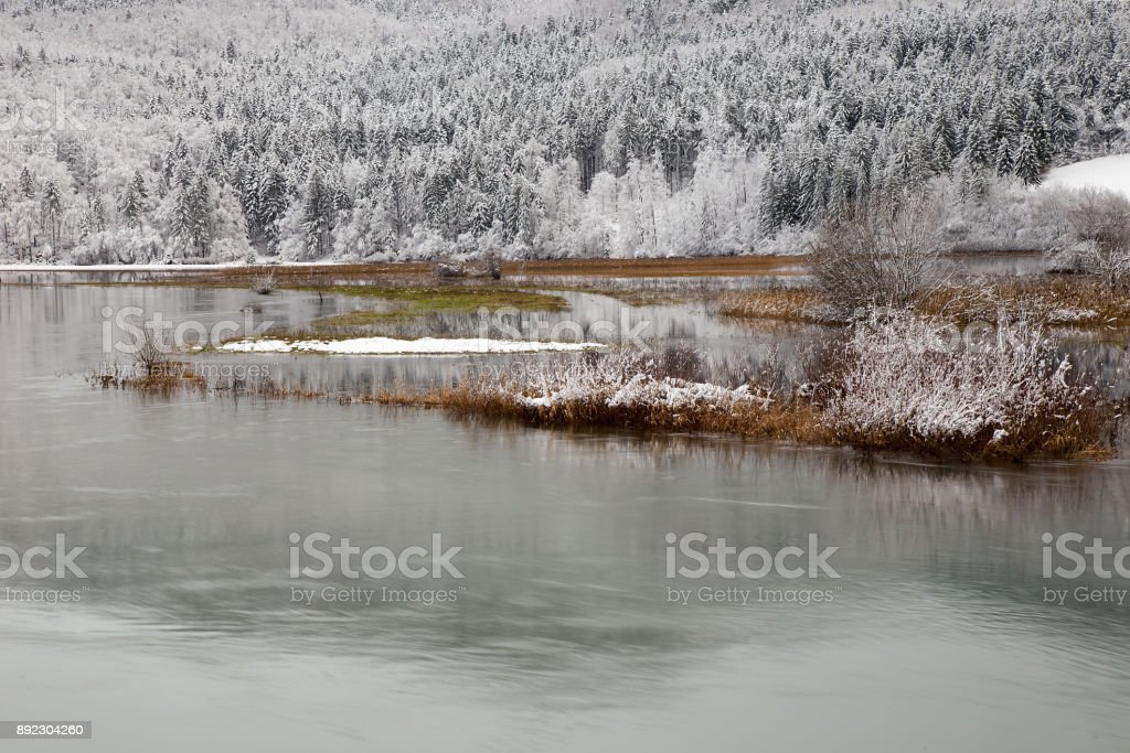 Winter landscape background with lake and snowy trees, Cerknica lake, Slovenia stock photo