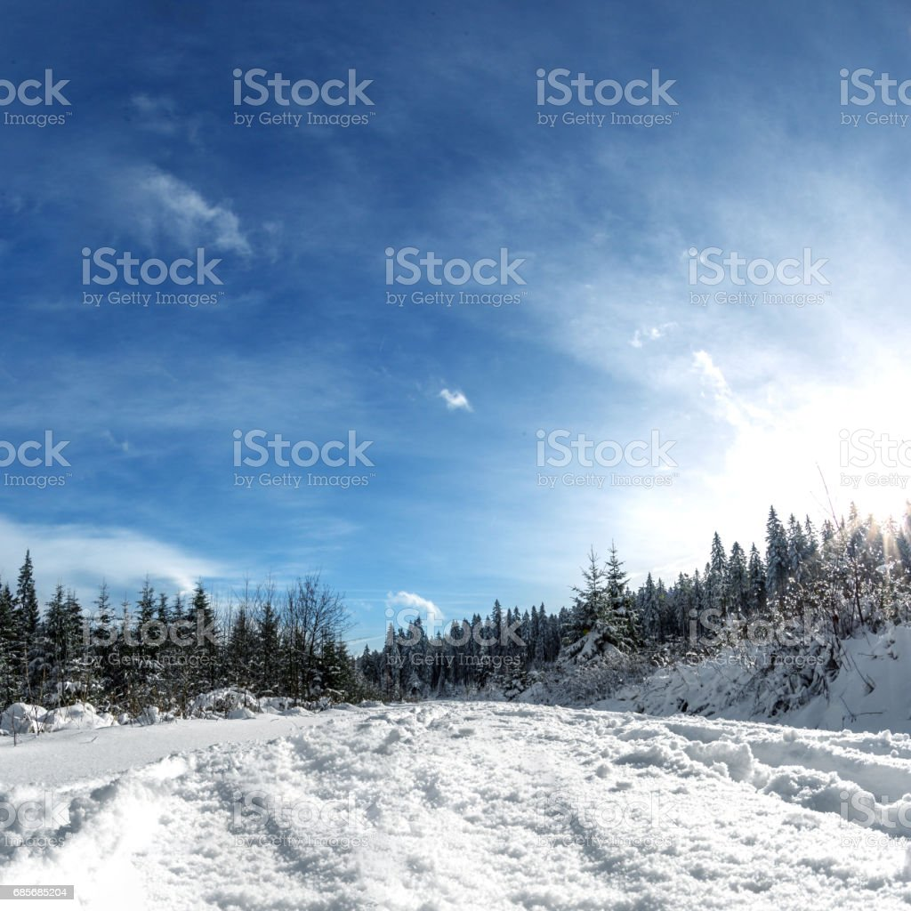 Winter landscape, cross country ski trail royalty-free stock photo