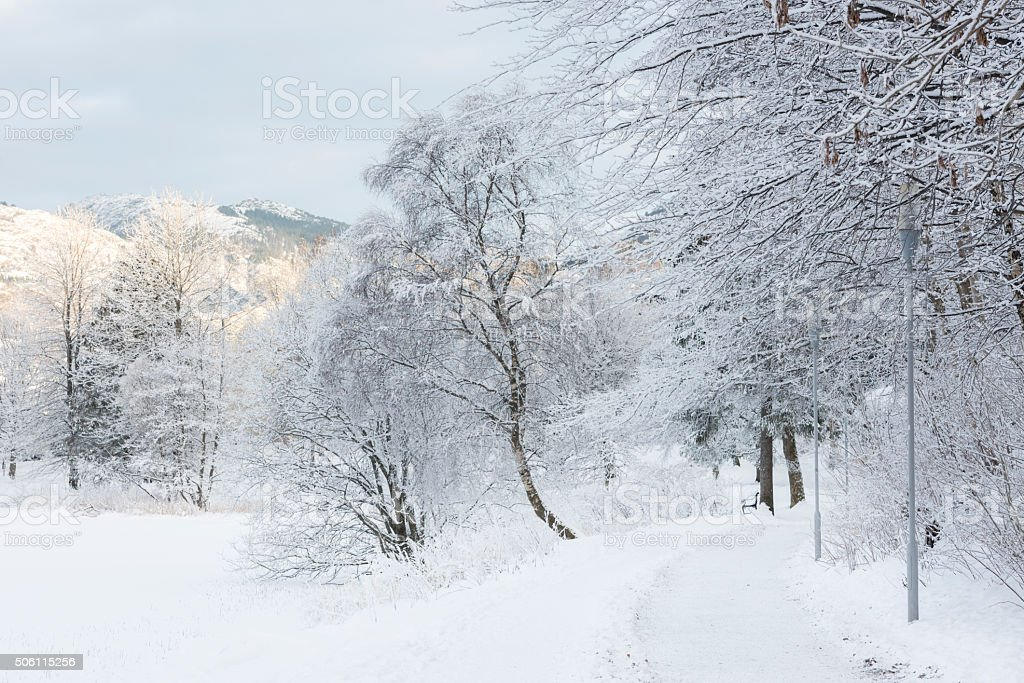 Winter landscape in a park in Bergen, Norway royalty-free stock photo