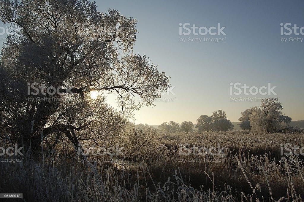 winter landscape in Brandenburg stock photo