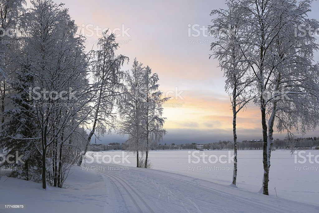 Winter landscape in Kuusamo, Finland stock photo