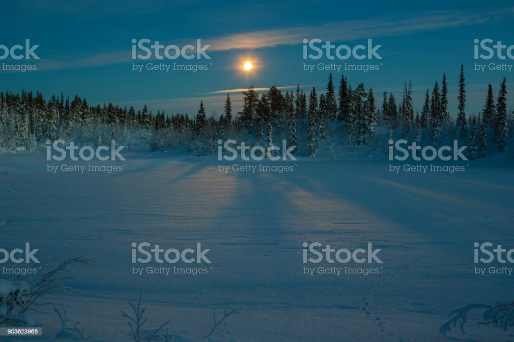 Winter landscape in moonlight stock photo