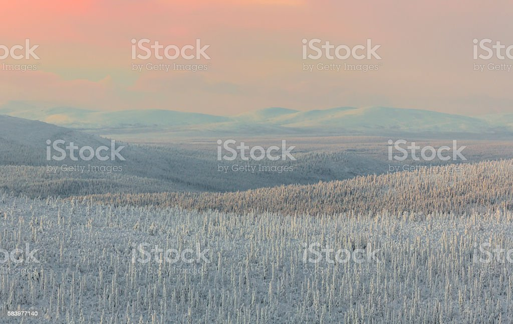 Winter landscape in sunset stock photo
