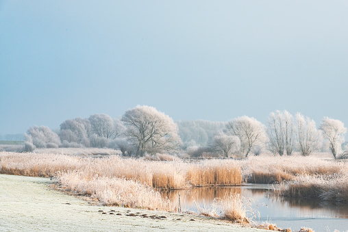 Winter landscape in the delta of the river IJssel near Kampen, The Netherlands. Kampen is an ancient Hanseatic League in Overijssel, The Netherlands.