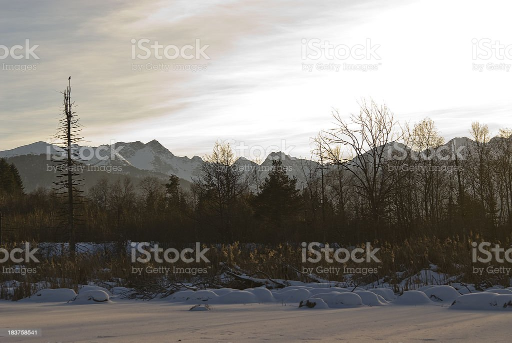 Winter landscape in the evening - shadow on ice royalty-free stock photo