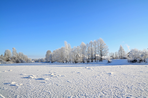 Winter landscape in the forest on a sunny afternoon snow-capped trees against the blue sky