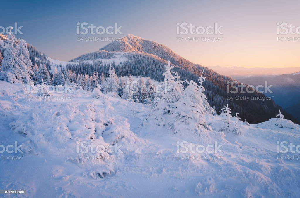Winter landscape in the morning stock photo