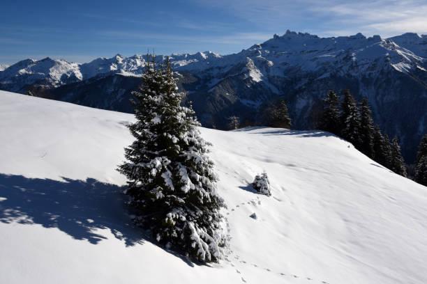 Winterlandschaft in den Schweizer Alpen – Foto