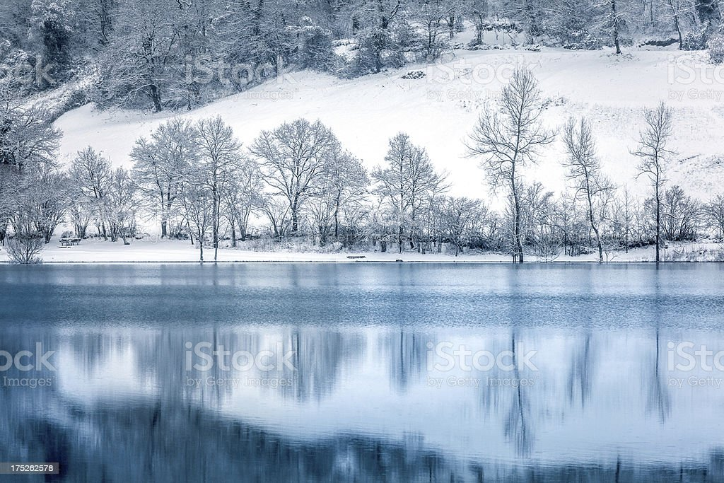 Winter Landscape, Lake and Snowy Trees royalty-free stock photo