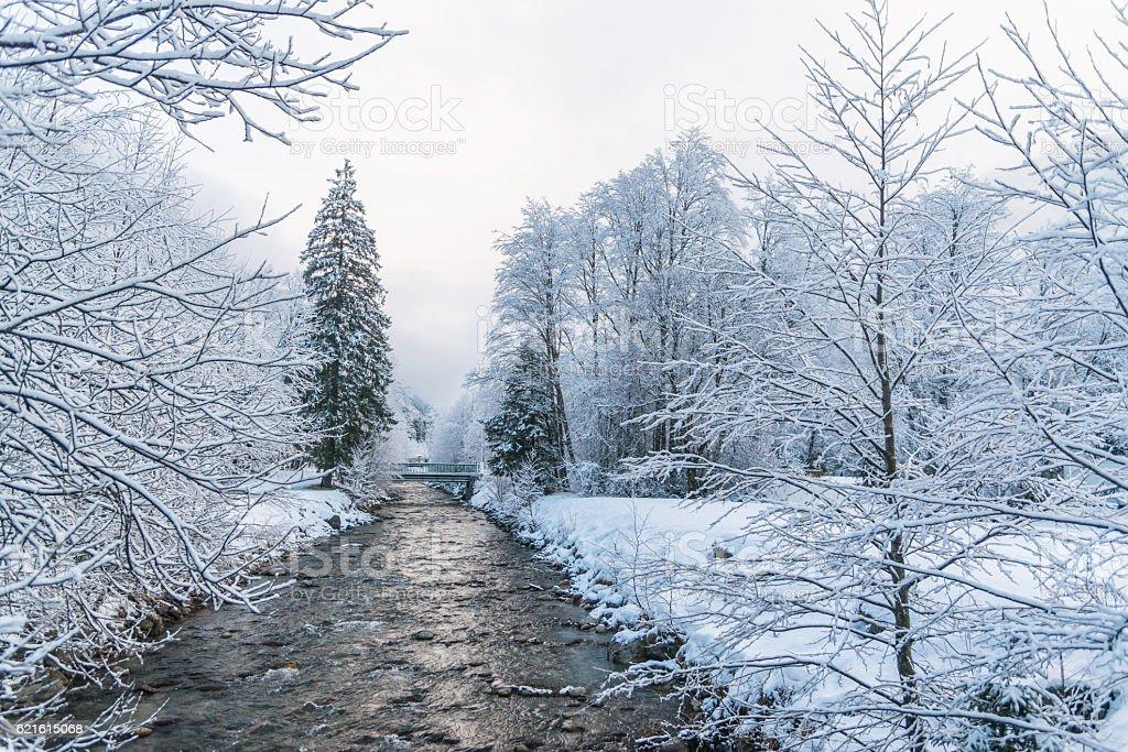 Winter landscape near small river stock photo