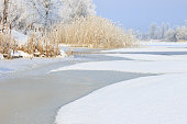 Winter landscape of a frozen river and trees on the shore covered with frost on a sunny day.