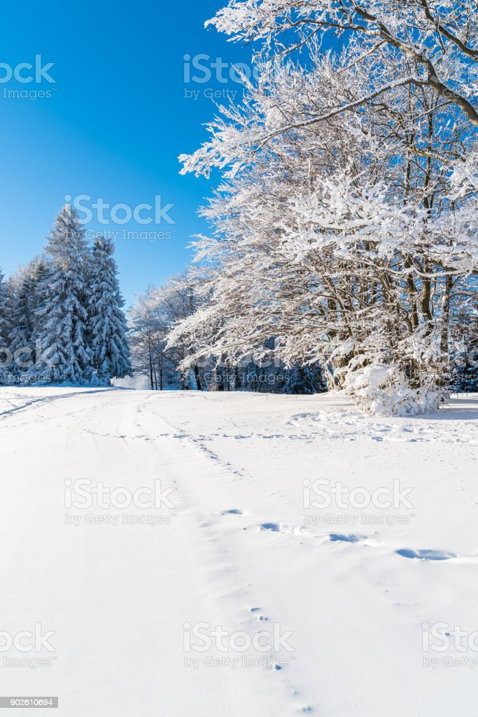 Winter landscape of Beskid Sadecki Mountains on sunny day, Poland stock photo