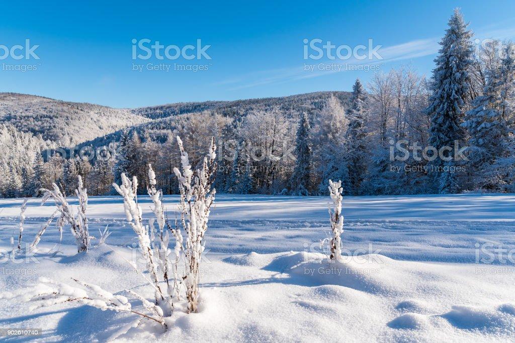 Winter landscape of Beskid Sadecki Mountains, Poland stock photo