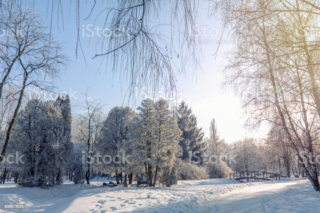 Winter landscape of frosty trees and blue sky royalty-free stock photo