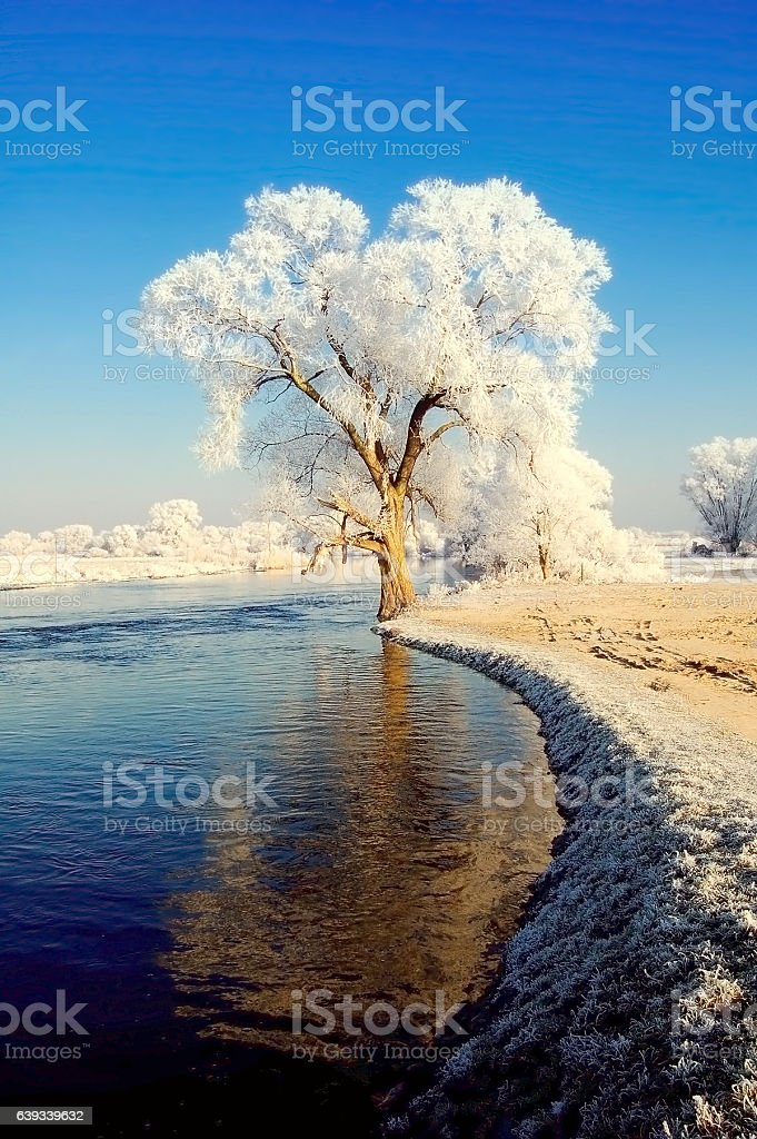 winter landscape of Havel river stock photo
