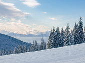 Mountain range with peak and ski slope and spruce forest in a foreground in Carpathian Mountains in winter