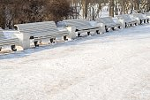 winter landscape of the park with empty benches for rest located in one row one after another
