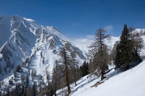 winterlandschaft auf einen wunderschönen tag - fiss tirol stock-fotos und bilder