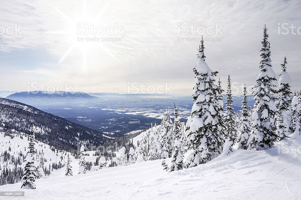 Winter Landscape on Big Mountain in Whitefish, Montana stock photo