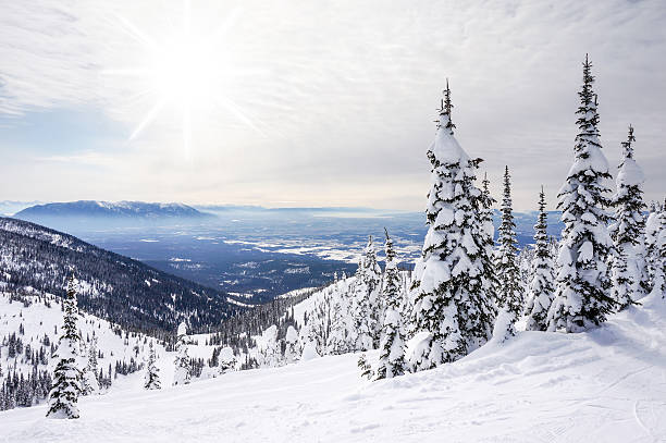 winter landscape on big mountain in whitefish, montana - us glacier national park stock pictures, royalty-free photos & images