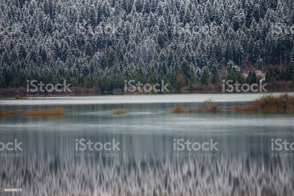 Winter landscape on Cerknica lake, Slovenia stock photo