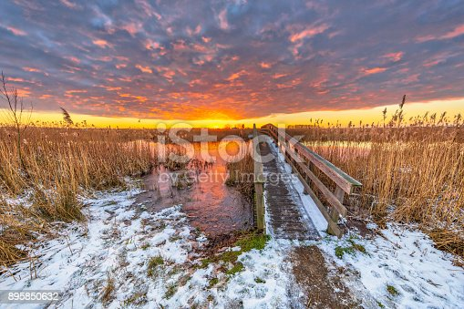 Wooden walkway bridge in Winter landscape with Thin layer of snow in dutch swamp