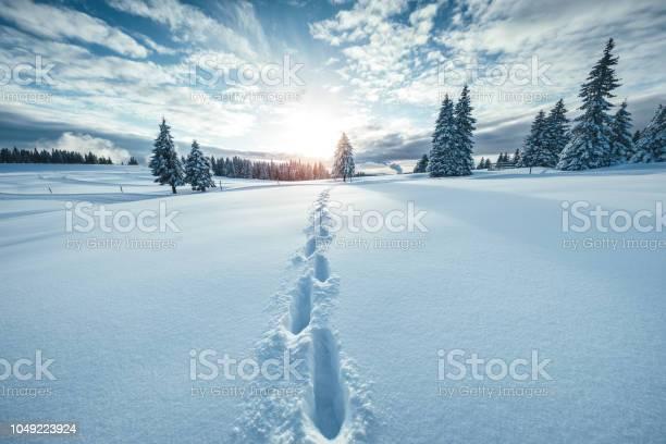 Winter landscape picture id1049223924?b=1&k=6&m=1049223924&s=612x612&h= c  3h8oas d77hvlfjkah6 8bik0rnfybbqadz ov0=