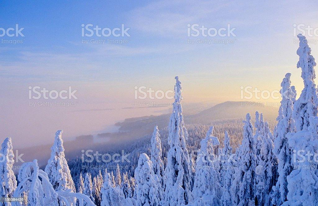 Paisaje de invierno foto de stock libre de derechos