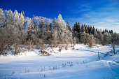 winter landscape with the wood the river and the blue sky