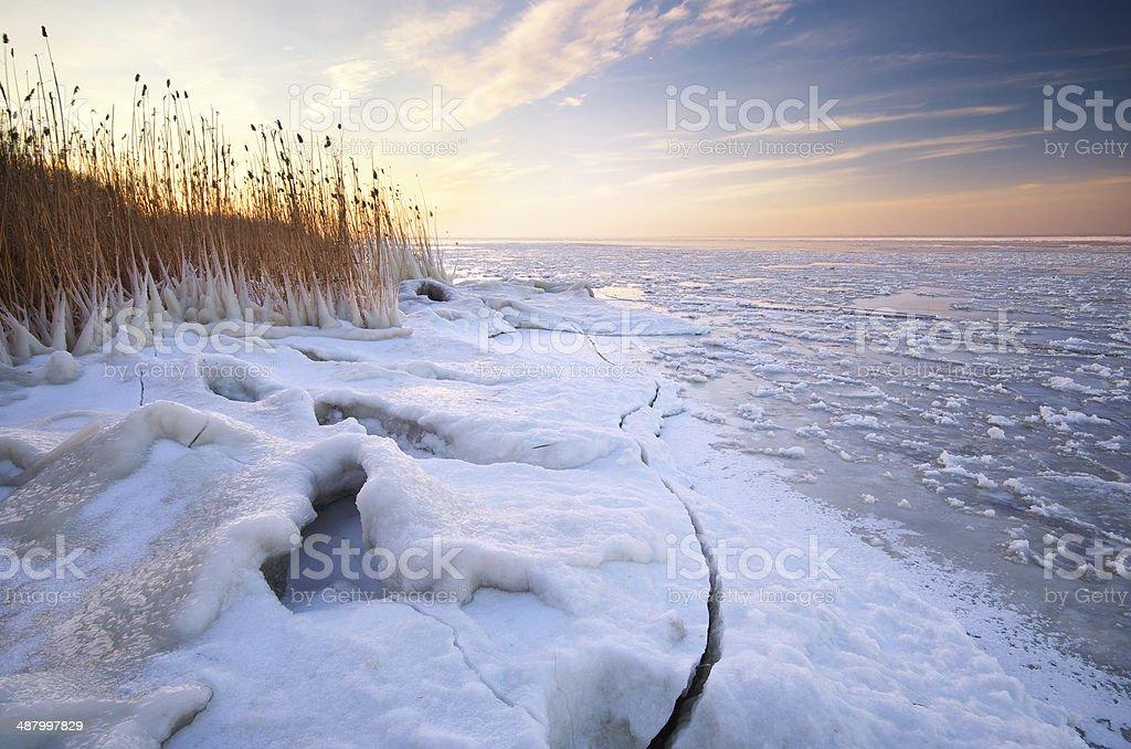 Winter Landschaft. – Foto